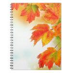 Hojas de la caída del otoño cuaderno