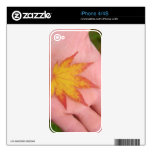 Hojas de la caída en la mano skins para iPhone 4S