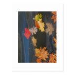 hojas de la caída tarjeta postal