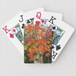 Hojas de la caída y naipes del árbol de abedul baraja cartas de poker