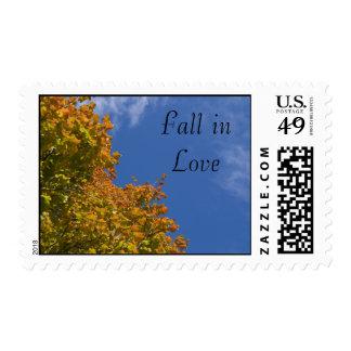 Hojas de la caída y sello del boda del amor del ci