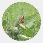 Hojas de la mariposa pegatina
