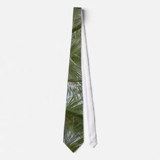 Hojas de la palmera corbatas