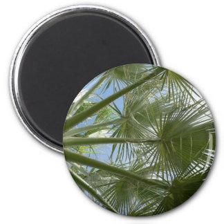 Hojas de la palmera iman de nevera
