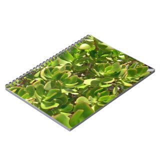 Hojas de la planta del jade libro de apuntes con espiral