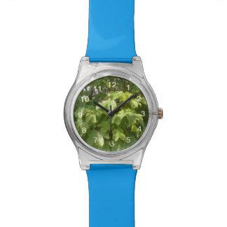 Hojas de la planta verde relojes de mano