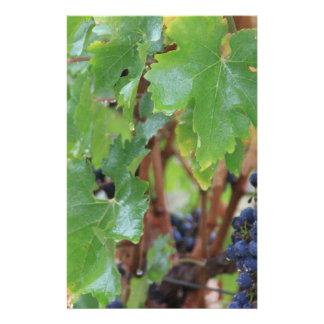 Hojas de la uva papeleria de diseño