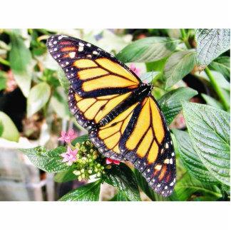 Hojas de las flores de mariposas de la mariposa fotoescultura vertical