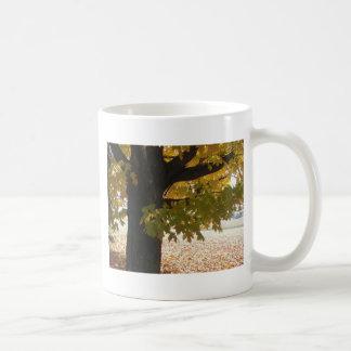 Hojas de los árboles de las escenas del otoño de taza
