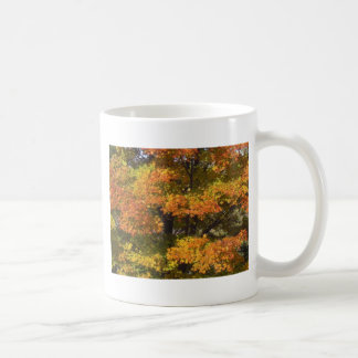 Hojas de los árboles de las escenas del otoño de taza clásica