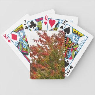 Hojas de los árboles del otoño de la foto de color barajas de cartas
