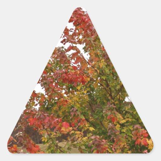 Hojas de los árboles del otoño de la foto de pegatina triangular