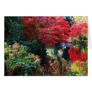 Hojas de los colores y de otoño de la caída tarjeta