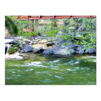 Hojas de los ríos de las corrientes de los puentes tarjeta postal