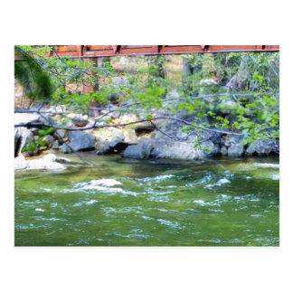 Hojas de los ríos de las corrientes de los puentes tarjetas postales