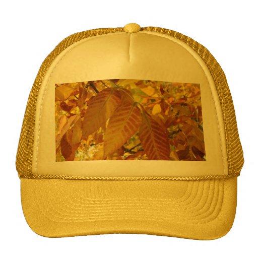Hojas de oro de Brown Gorra