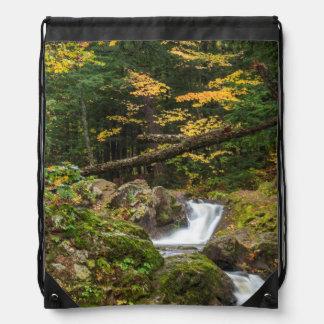 Hojas de otoño a lo largo del pequeño río de la mochila