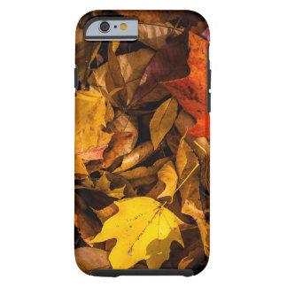 Hojas de otoño ardientes funda de iPhone 6 tough