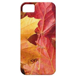 ¡Hojas de otoño - atontando! iPhone 5 Case-Mate Protector