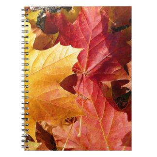 ¡Hojas de otoño - atontando! Libro De Apuntes