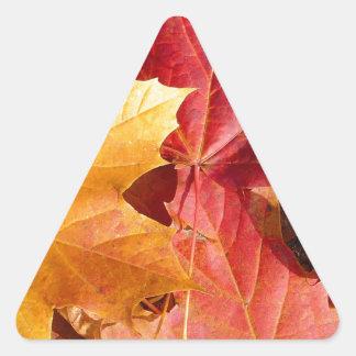 ¡Hojas de otoño - atontando! Colcomanias De Trianguladas