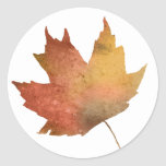 Hojas de otoño bonitas pegatina redonda