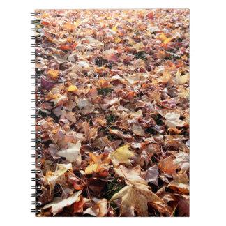 Hojas de otoño caidas - libreta