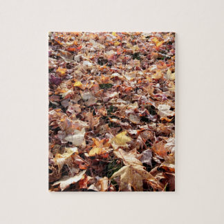 Hojas de otoño caidas - rompecabezas difícil