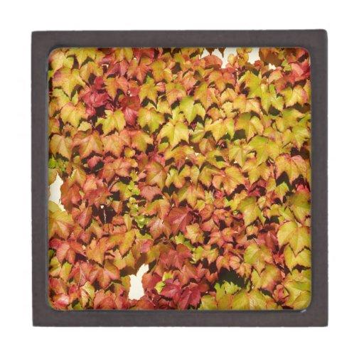 Hojas de otoño cajas de joyas de calidad