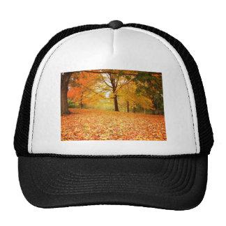 Hojas de otoño, Central Park, New York City Gorra