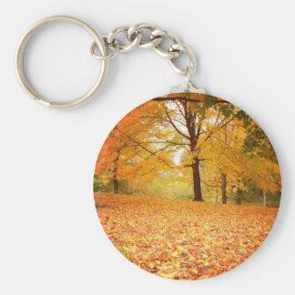 Hojas de otoño, Central Park, New York City Llavero Redondo Tipo Pin