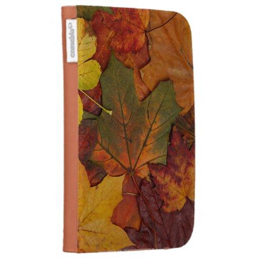 Hojas de otoño coloridas