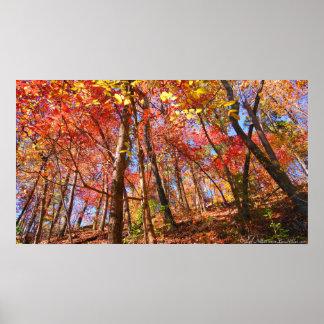 Hojas de otoño coloridas brillantes en el poster d