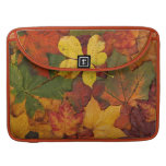 Hojas de otoño coloridas fundas para macbooks
