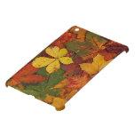 Hojas de otoño coloridas iPad mini cárcasa