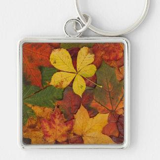 Hojas de otoño coloridas llavero cuadrado plateado