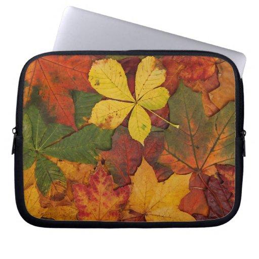 Hojas de otoño coloridas mangas portátiles