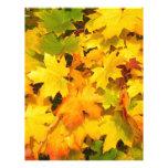 Hojas de otoño coloridas membrete