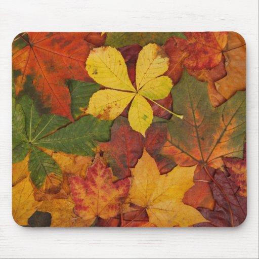 Hojas de otoño coloridas Mousepad Tapetes De Ratón