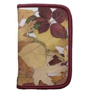 Hojas de otoño coloridas organizador