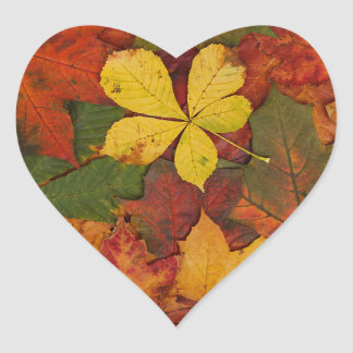 Hojas de otoño coloridas pegatinas corazon personalizadas