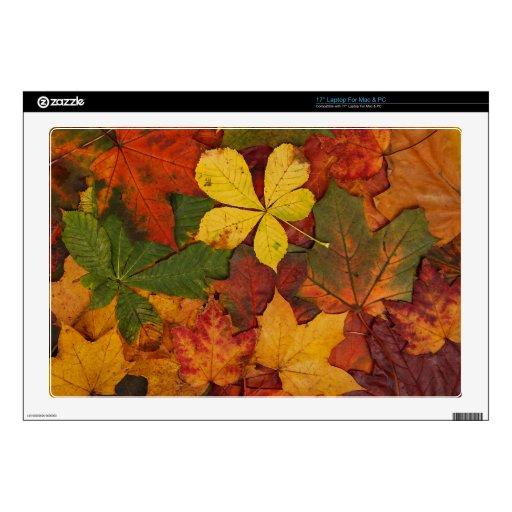 Hojas de otoño coloridas portátil calcomanías