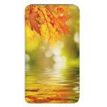 Hojas de otoño coloridas que reflejan en el agua 2
