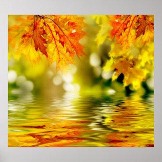 Hojas de otoño coloridas que reflejan en el agua 2 poster