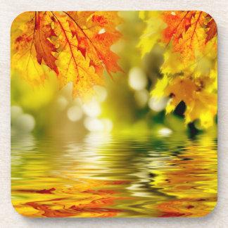 Hojas de otoño coloridas que reflejan en el agua 2 posavasos de bebida