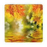 Hojas de otoño coloridas que reflejan en el agua 2 posavasos de puzzle