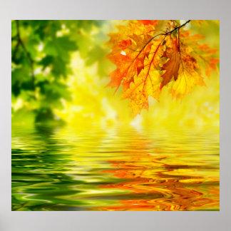 Hojas de otoño coloridas que reflejan en el agua impresiones