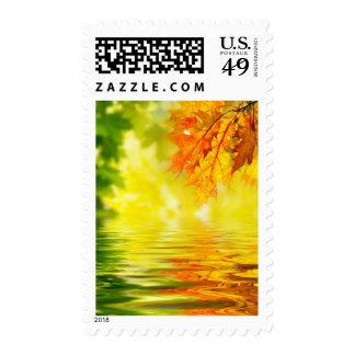 Hojas de otoño coloridas que reflejan en el agua franqueo