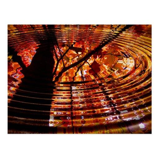 Hojas de otoño coloridas reflejadas en agua tarjeta postal