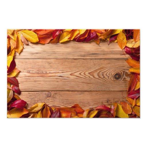 Hojas de otoño de árboles frutales en el fondo de  fotos